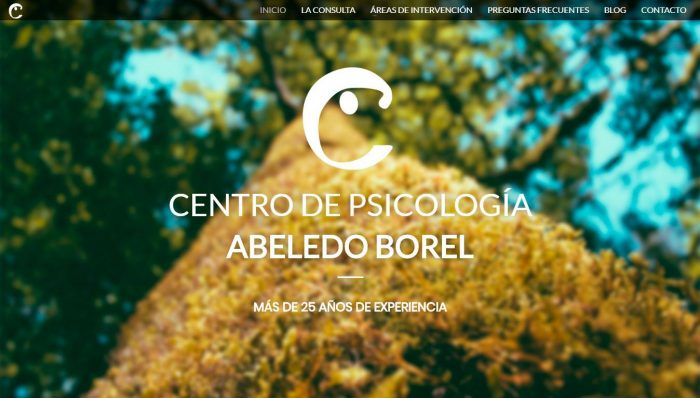 Psicólogos Santiago